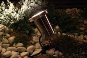 Oświetlenie LED na dachu. Reflektor. Ogród na dachu.