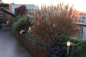 Ogród na dachu. Inteligentne oświetlenie LED