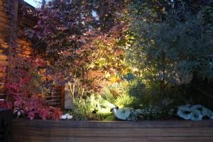 Barwy jesieni - ogród na dachu. Oświetlenie LED.