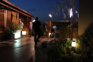 Klimatyczny ogród na dachu. Program TVN - Maja w ogrodzie.